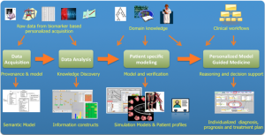 Model guided Personalised Medicine Process